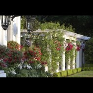 custom-pergola-set-chadsworth-4026-A